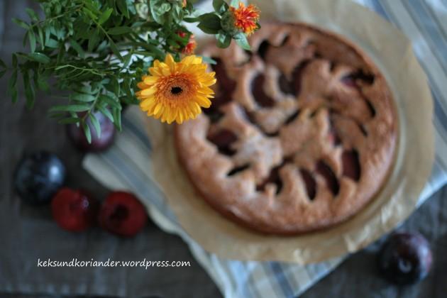 Pflaumenkuchen Zimt Herbst Rührteig 2