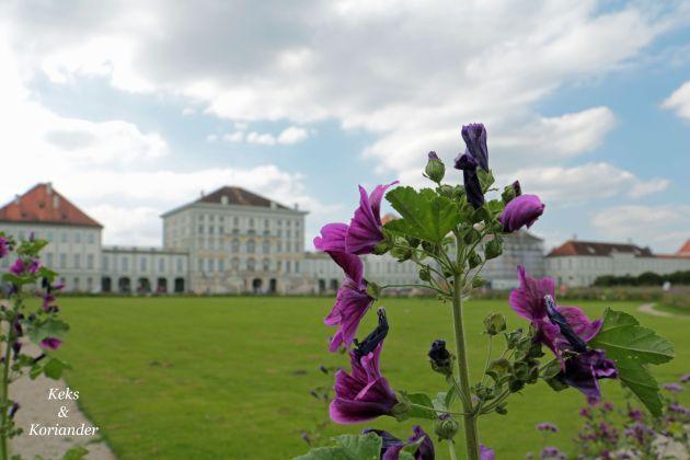 Nymphenburger Schlosspark München Sommer Blume Vordeseite