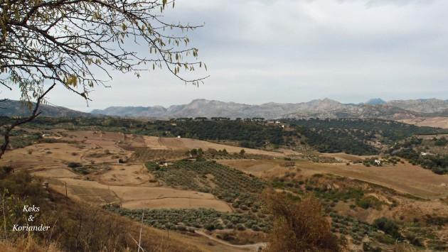 Die Umgebung von Ronda