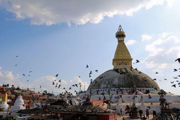 nepal-kathmandu-big-stupa-augen